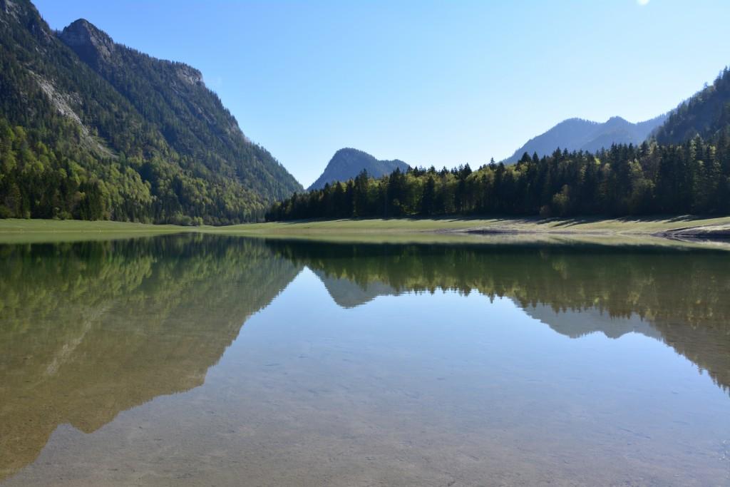 Jorg-Romstotter-Wunder-Natur-Trend-50Prozent--20150827